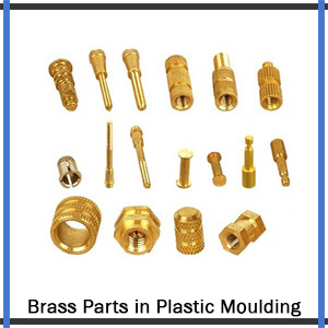 Brass Parts in Plastic Moulding